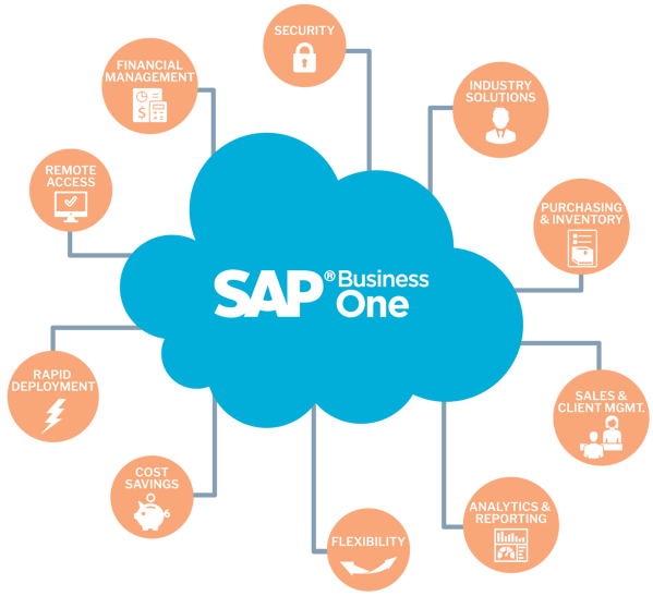 SAP-Business-One -Features